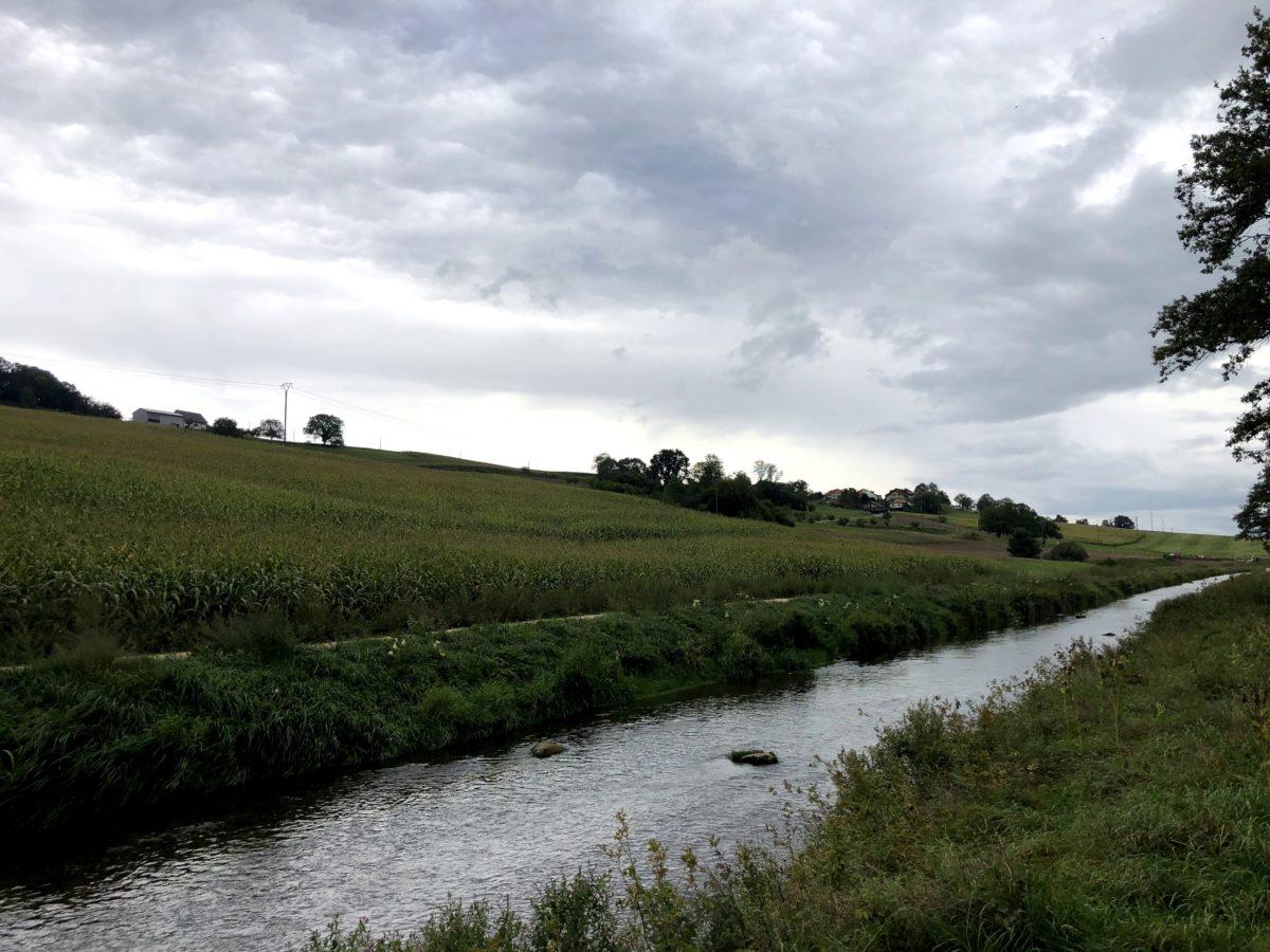 Renaturation Venoge - Lussery-Villars